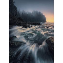 KOMAR Foto-Vliestapete »Cry of the Sea«, Breite 200 cm, seidenmatt