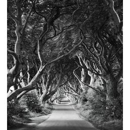 KOMAR Foto-Vliestapete »Forevenue«, Breite 250 cm, seidenmatt