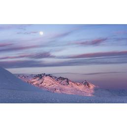 KOMAR Foto-Vliestapete »Purple Dinner«, Breite 450 cm, seidenmatt