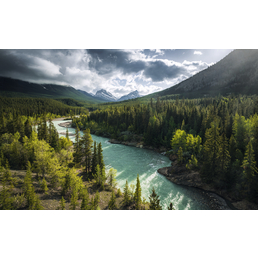 KOMAR Foto-Vliestapete »Wild Canada«, Breite 450 cm, seidenmatt