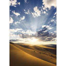 KOMAR Foto-Vliestapete »Wüstenmagie«, Breite 200 cm, seidenmatt