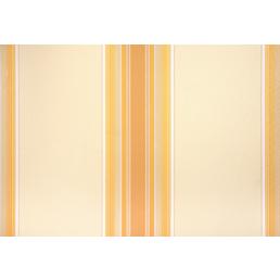 GO/ON! Gelenkarmmarkise, BxT: 250x400 cm, zitronengelb/orange gestreift