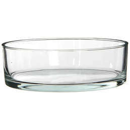 mica® decorations Glasschale Kenny, H 8 x D 25 cm, transparent, rund