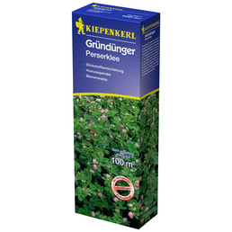 KIEPENKERL Gründüngung resupinatum L. Trifolium »Perserklee«