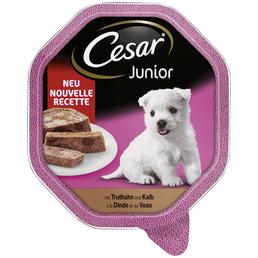 CESAR Hunde Nassfutter, Truthahn / Kalb, 14x150 g