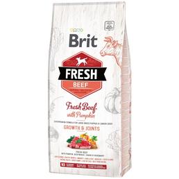 BRIT Hundetrockenfutter »Fresh Dog«, 1 Beutel à 12000 g