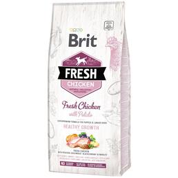 BRIT Hundetrockenfutter »Fresh Dog«, Huhn / Kartoffel, 12 kg