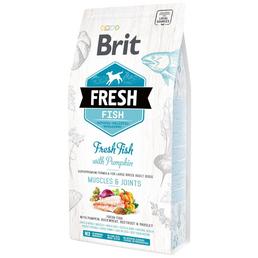 BRIT Hundetrockenfutter »Fresh Dog«, Muscles & Joints, Fisch / Kürbis, adult