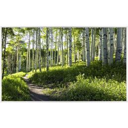 Papermoon Infrarotheizung »EcoHeat - Wald«, Matt