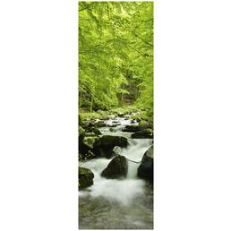 Papermoon Infrarotheizung »EcoHeat - Wasser | Wald«, Glänzend