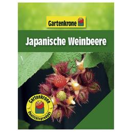 GARTENKRONE Japanische Weinbeere Rubus phoenicolasius