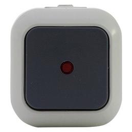 REV-Ritter Kontrollschalter, Grau, Kunststoff