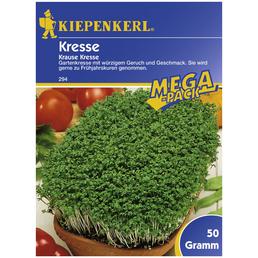 KIEPENKERL Kresse sativum Lepidium