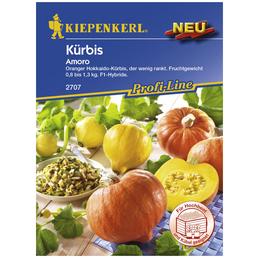 KIEPENKERL Kürbis maxima Cucurbita