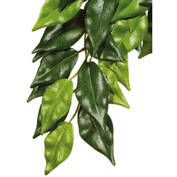 EXO TERRA Kunstpflanze, Rainforest Hanging Plants - Ficus