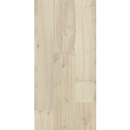 KAINDL Laminat »Masterfloor«, BxL: 193 x 1383 mm, Stärke: 7 mm, Ahorn Pale