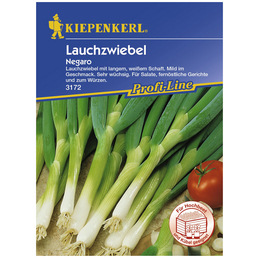 KIEPENKERL Lauchzwiebel fistulosum Allium