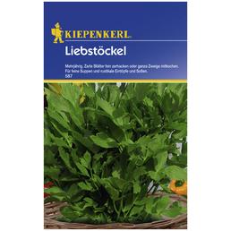 KIEPENKERL Liebstöckel officinale Levisticum