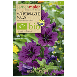 SAMEN MAIER Mauretanische Malve (Große Käsepappel), Blüte: dunkelrosa