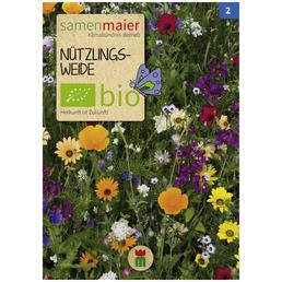 SAMEN MAIER Nützlingsweide, Blüte: bunt
