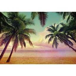 KOMAR Papiertapete »Miami«, Breite: 368 cm, inkl. Kleister