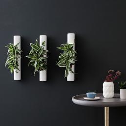 Pflanzen in Keramik 3er-Set, BxHxT: 40 x 6,5 x 22 cm, weiß