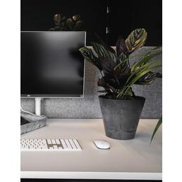 ARTSTONE Pflanztopf »Artstone«, BxH: 27 x 24 cm, schwarz, Kunststoff