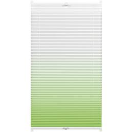 GARDINIA Plissee lichtdurchlässig, Easyfix, 80x130 cm