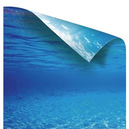 Poster, blau