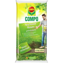 COMPO Rasensamen »grün und dicht«