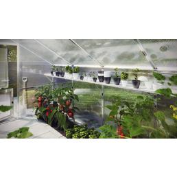 KGT Regal für Gewächshäuser »Orchidee III«, B x H: 323  x 5  cm