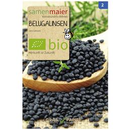 SAMEN MAIER Saatgut »Belugalinsen«
