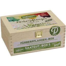 SAATGUT DILLMANN Saatgut-Box Färberpflanzen