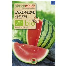 SAMEN MAIER Saatgut »Wassermelone, Sugar Baby«