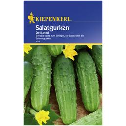 KIEPENKERL Salatgurke sativus Cucumis »Delikatess«
