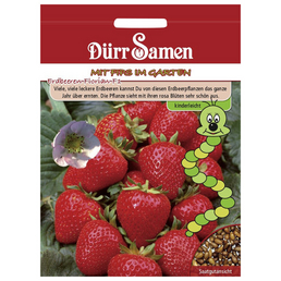 DÜRR SAMEN Samen Kindersorten Erdbeeren Florian F1