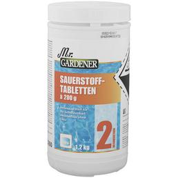 MR. GARDENER Sauerstofftabletten, 1,2 kg, für Pools