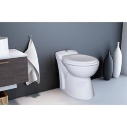 SETMA Stand-WC-Komplettset »waterGenie«, Tiefspüler, weiß, mit Spülrand