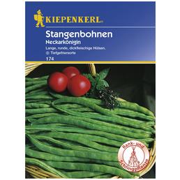 KIEPENKERL Stangenbohne vulgaris var. vulgaris Phaseolus »Neckarkönigin«