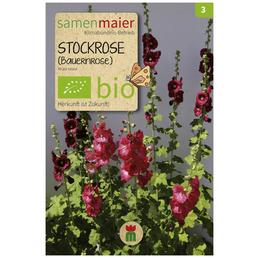 SAMEN MAIER Stockrose (Bauernrose)