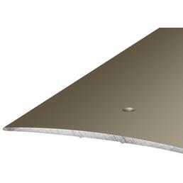 CARL PRINZ Übergangsprofil, edelstahlfarben, BxLxH: 100 x 1000 x 5 mm