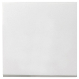 GIRA Universal-Wipptaste, System 55, Kunststoff, Weiß