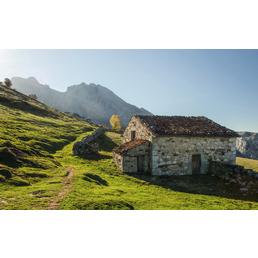 KOMAR Vliestapete »Picos de Europe Alm«, Breite 450 cm, seidenmatt