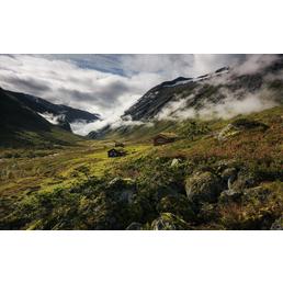 KOMAR Vliestapete »Pure Norway«, Breite 450 cm, seidenmatt