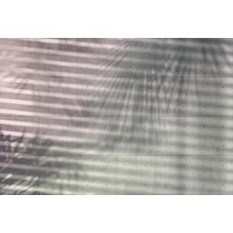 KOMAR Vliestapete »Shadow«, Breite: 368 cm, inkl. Kleister