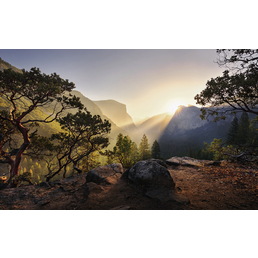 KOMAR Vliestapete »Yosemites Secret«, Breite 450 cm, seidenmatt