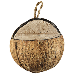 ELLES Vogelfutter »3/4 Kokosnuss«, Erdnuss, 22x400 g