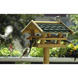 DOBAR Vogelhaus, Vögel
