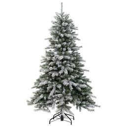 Evergreen Weihnachtsbaum »Cedar Frost«, Höhe: 150 cm, grün/weiß