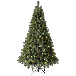 Evergreen Weihnachtsbaum »Oxford Kiefer «, Höhe: 180 cm, grün, beleuchtet